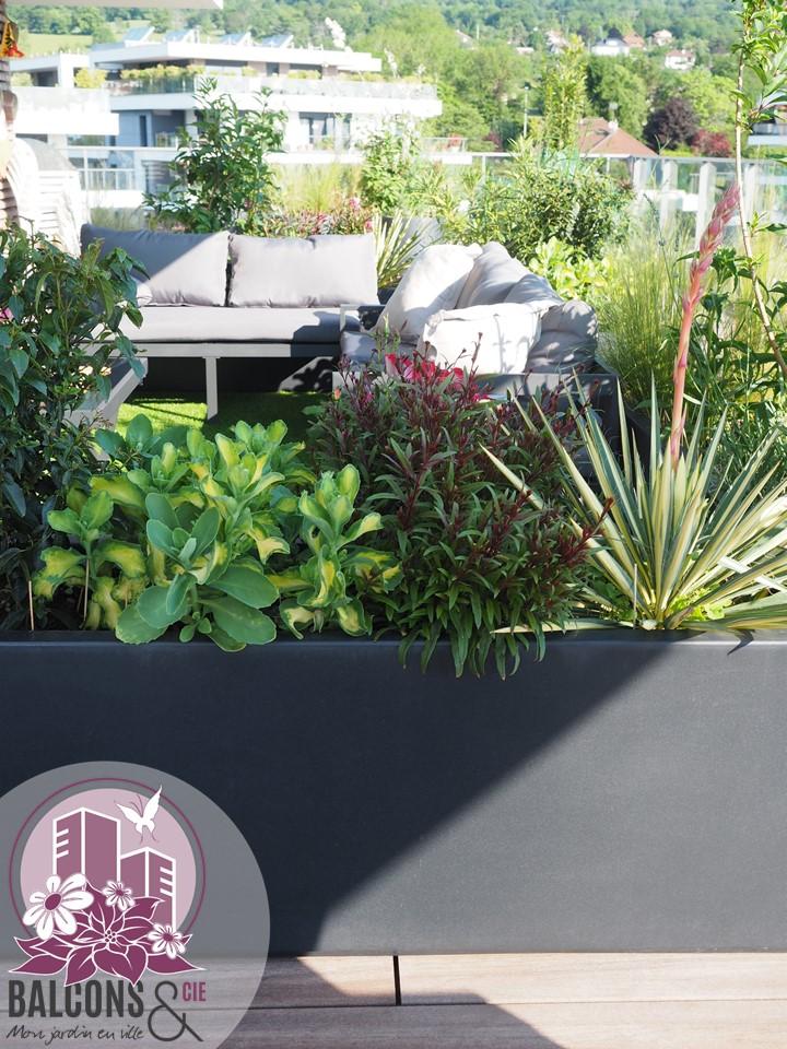 Végétalisation d'une terrasse en attique à Thoiry